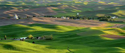 Photograph - The Palouse by Vic Harris