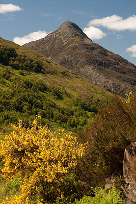 Photograph - The Pap Of Glencoe by Colette Panaioti