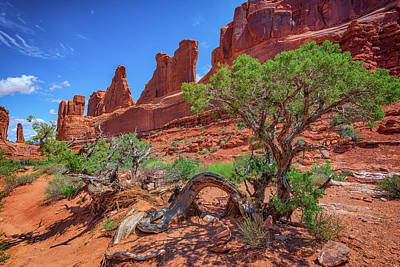 Sandstone Formation Photograph - The Park Avenue Trail by Rick Berk