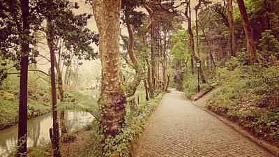 Photograph - The Park  by Pedro Venancio