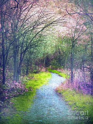 Photograph - The Pastel Path by Tara Turner