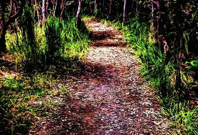 Photograph - The Path 6 by Kristalin Davis