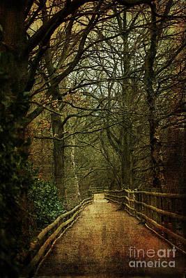 Digital Art - The Path Ahead by Liz Alderdice