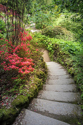 Photograph - The Path At Powerscourt Gardens by Debra and Dave Vanderlaan