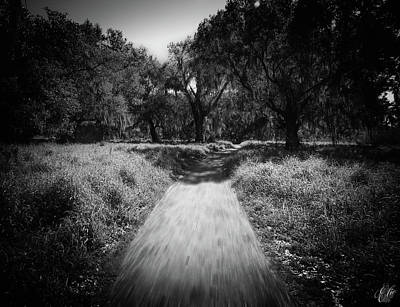 Photograph - The Path Before Me, No. 1 by Elie Wolf