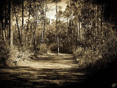 Photograph - The Path Before Me, No. 6 by Elie Wolf