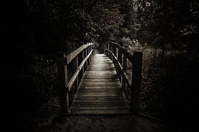 Photograph - The Path Between Darkness And Light by Scott Norris