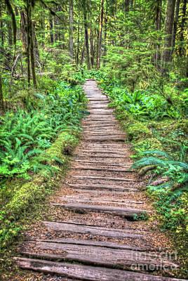 Photograph - The Path by Deborah Klubertanz