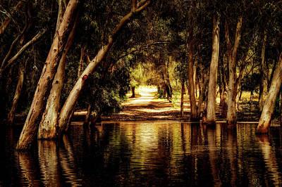 Photograph - The Path by Dimitris Vetsikas