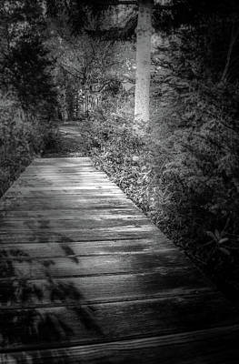 Pathway Digital Art - The Path Home by Terry Davis