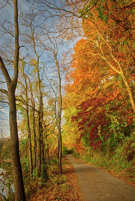 Photograph - The Path In Fall by Mark Dodd
