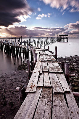Photograph - The Path by Jorge Maia