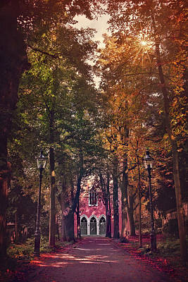 Basel Photograph - The Path Less Traveled by Carol Japp