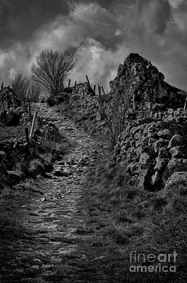 Rainy Photograph - The Path  by Robert Brown
