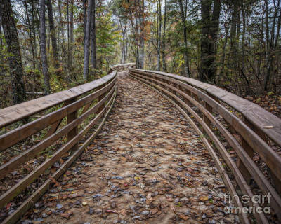 Photograph - The Path That Leads by Ken Johnson