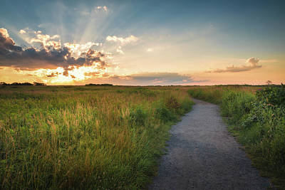 Photograph - The Path That Leads To Life by Kim Carpentier