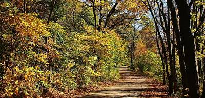 Photograph - The Path To A New Adventure by Bruce Bley