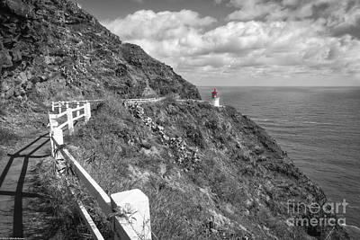 Photograph -  The Path To The Lighthouse by Mitch Shindelbower