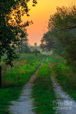 Gravel Road Photograph - The Path We Follow by Andrew Slater