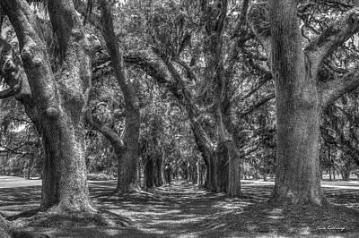 The Pathway Photograph - The Pathway Avenue Of Oaks Sea Island Golf Club St Simons Island Georgia Art by Reid Callaway