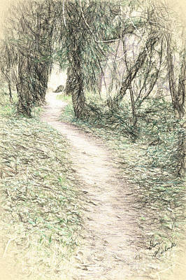Photograph - The Pathway by Diane Macdonald