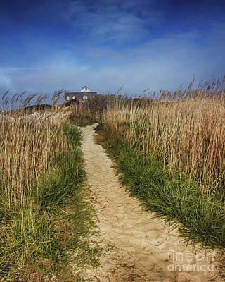 The Pathway Home Art Print by Tom Gari Gallery-Three-Photography