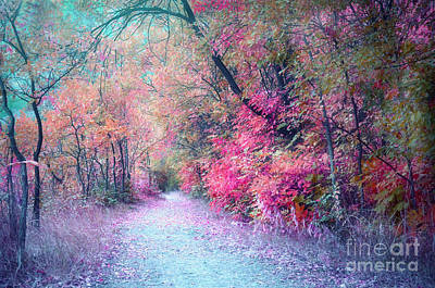 Photograph - The Pathway Of Gentle Memories by Tara Turner