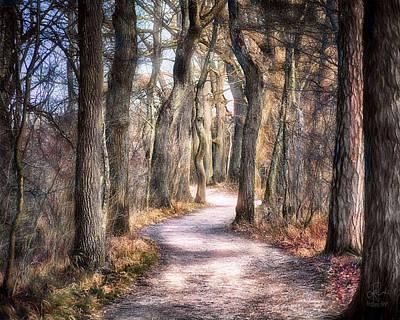 Digital Art - The Pathway by Pennie McCracken