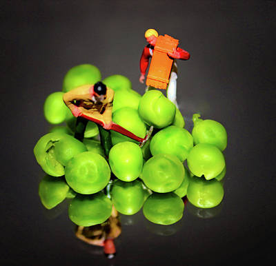 Miniature Photograph - The Pea Farmers by Martin Newman