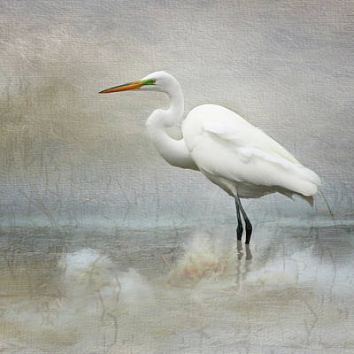 Photograph - The Peace Of Wild Things by Karen Lynch