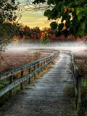 Photograph - The Peaceful Path by Jill Love