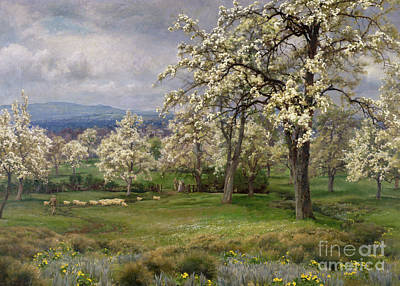 Trees Blossom Painting - The Pear Orchard by Alfred Parsons