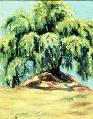 The Pepper Tree Art Print by Helen O Hara