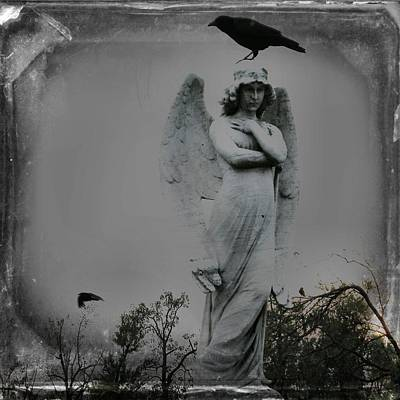 Crow Image Photograph - The Perch Of An Angel by Gothicrow Images