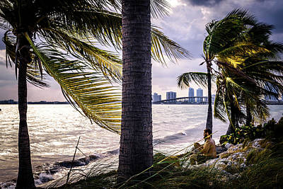 Flowers Miami Photograph - The Perfect Spot by Camille Lopez