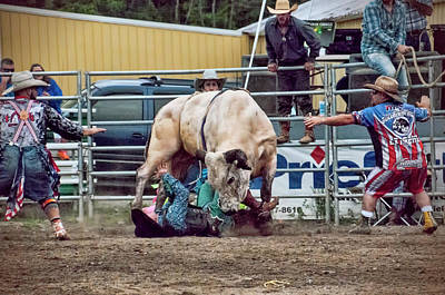 Photograph - The Perils Of Bull-riding by Phyllis Taylor