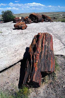 The Petrified Forest 01 Original