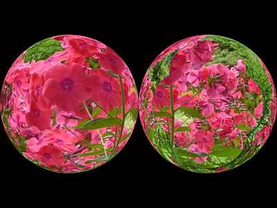 Digital Art - The Phlox Twins by Nancy Pauling