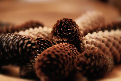 Photograph - The Pine Cones by Jeremy Lavender Photography