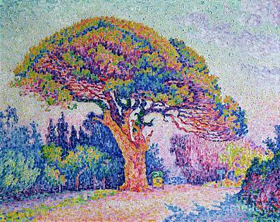 Pointillist Painting - The Pine Tree At Saint Tropez by Paul Signac