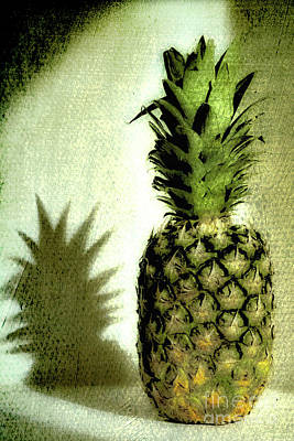 Photograph - The Pineapple by Toula Mavridou-Messer