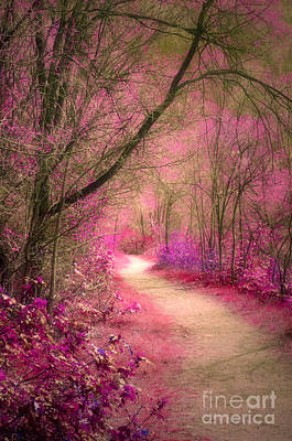 Photograph - The Pink Boulevard by Tara Turner