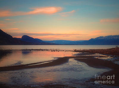 Photograph - The Pink Clouds Of January by Tara Turner