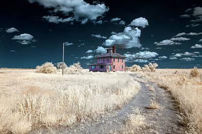 Photograph - The Pink House In Halespectrum 1 by Brian Hale