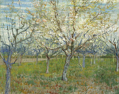 The Pink Orchard  Art Print by Vincent van Gogh