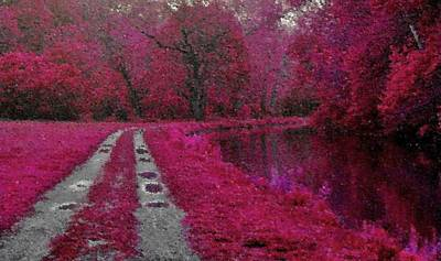 Digital Art - The Pink Path by Val Arie
