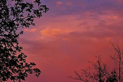 Photograph - The Pink Sky by Amanda Struz