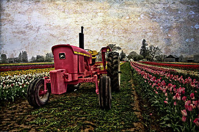 Photograph - The Pink Tractor  by Thom Zehrfeld