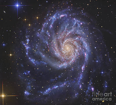 Radiant Image Photograph - The Pinwheel Galaxy, Also Known As Ngc by R Jay GaBany