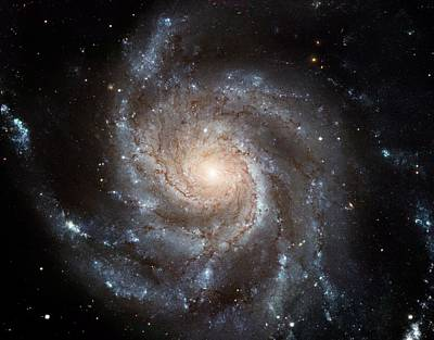 Hubble Telescope Painting - The Pinwheel Galaxy  by Hubble Space Telescope